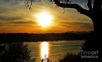 Photograph - Summer Sunset by Frank Larkin