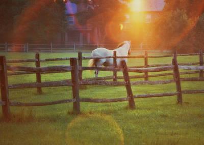 Photograph - Summer Sunset by JAMART Photography