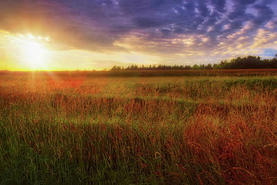 Photograph - Summer Sunset - Waukesha Wisconsin  by Jennifer Rondinelli Reilly - Fine Art Photography