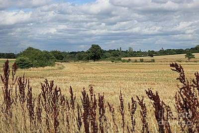 Photograph - Summer Surrey Countryside by Julia Gavin