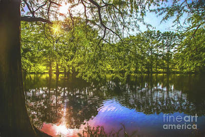 Photograph - Summer Time Reflection by Peggy Franz