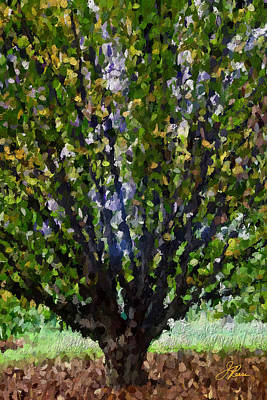 Painting - Summer Tree by Joan Reese
