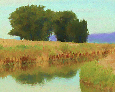 Agricultural Digital Art - Summer Trees by David King