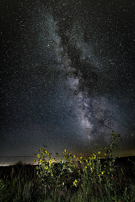 Photograph - Summer Under The Stars by Scott Bean