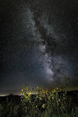 Photograph - Summer Under The Stars by Scott Bean