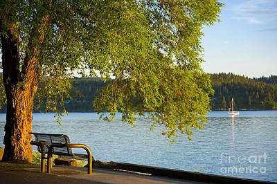 Photograph - Summer View by Idaho Scenic Images Linda Lantzy