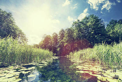 Banks Photograph - Summer View Of A River In The Woods. by Michal Bednarek