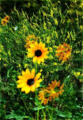Digital Art - Summer Wildflower Dreams by Aliceann Carlton