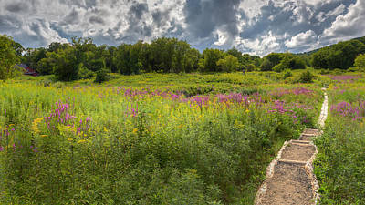 Photograph - Summer Wildflower Pasture by Bill Wakeley