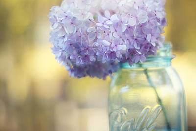 Purple Hydrangeas Photograph - Summer's End by Amy Tyler