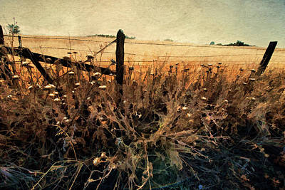 Summertime Country Fence Art Print