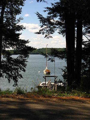 Photograph - Summertime In Maine by Bill Tomsa