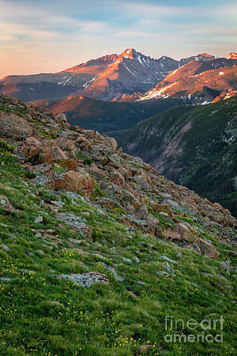 Photograph - Summertime In The Rocky Mountains by Ronda Kimbrow