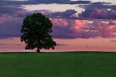 Photograph - Summertime Sunset by Dana Plourde