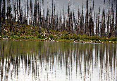Photograph - Summit Lake by Ed  Riche
