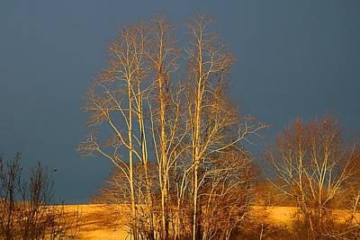 Photograph - Sun Against Dark Sky by Kathryn Meyer