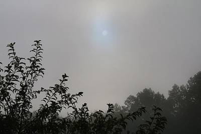 Photograph - Sun And Fog by Kathryn Meyer