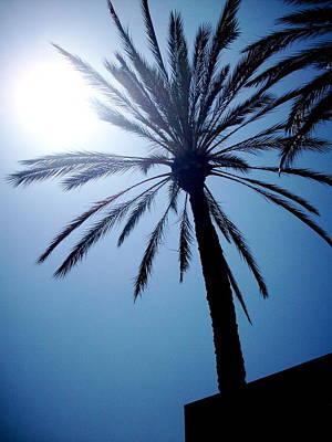 Sun And Palm Art Print by Marina Owens