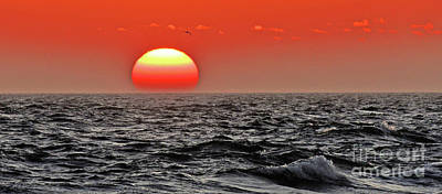 Photograph - Sun And Sea Gull Ver1 by Larry Mulvehill