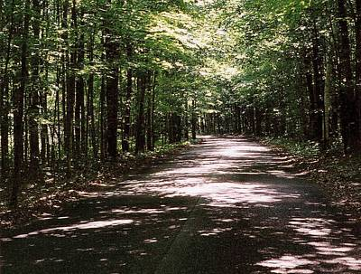Art Print featuring the photograph Sun And Shadow Road In Summer  C3pdl by Lyle Crump