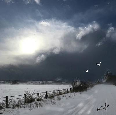 Painting - Sun And Snow by Ralph Taylor