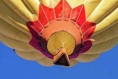 Photograph - Sun Balloon by Robin Zygelman