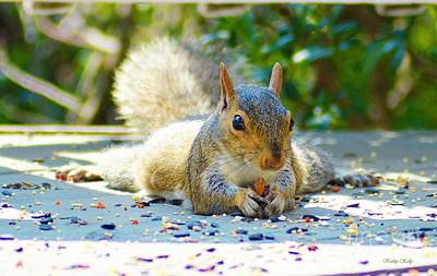 Photograph - Sun Bathing Squirrel by Kathy Kelly