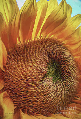 Photograph - Sun Bliss by Jean OKeeffe Macro Abundance Art