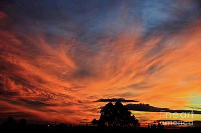 Photograph - Sun Burn by Debby Pueschel