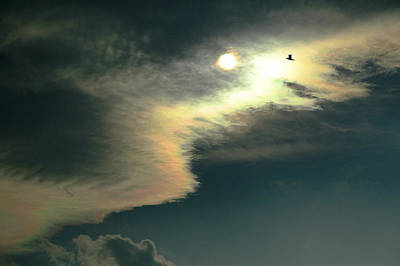 Photograph - Sun Clouds by James Steele