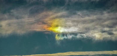 Photograph - Sun Dog 2011 by Greg Reed