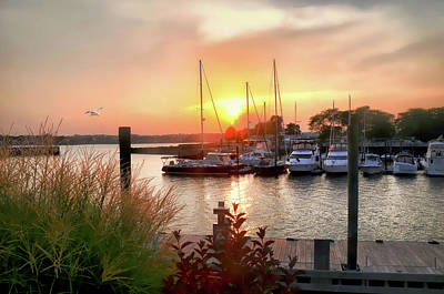 Photograph - Sun Down Cove Marina by Diana Angstadt