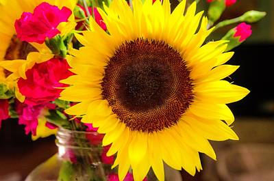Photograph - Sun Flower  by Mary Hahn Ward