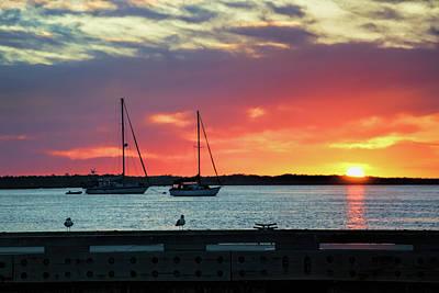 Photograph - Sun Gazing by Ed Waldrop