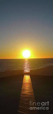 Photograph - Sun Gazing by Gem S Visionary
