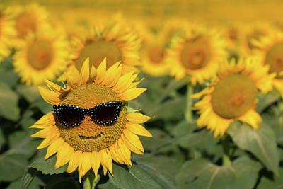 Photograph - Sun-glasses by Deb Buchanan