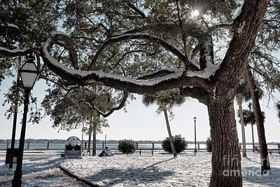 Photograph - Sun Gleaming Through The Snow by Dale Powell