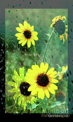 Digital Art - Sun In The Rain by Deborah Nakano