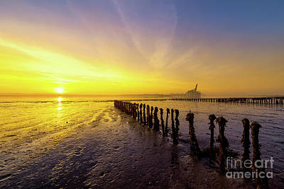 River Scenes Photograph - Sun Is Up by Svetlana Sewell