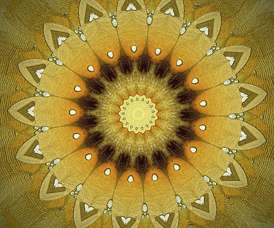 Repeating Digital Art - Sun Kaleidoscope by Wim Lanclus