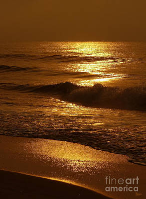 Photograph - Sun Kissed by Jeff Breiman