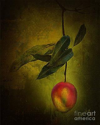 Mango Digital Art - Sun-kissed Mango by Linda King