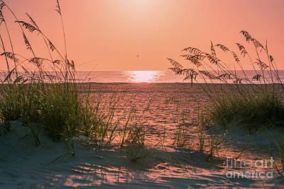 Ocean View Photograph - Sun Light On The Beach by Zina Stromberg