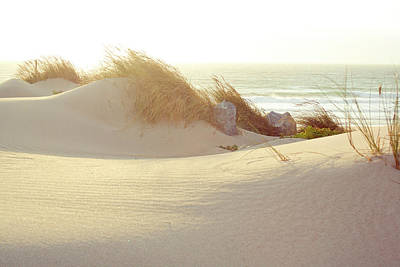 Tranquil Scene Photograph - Sun On Beach by Guillermo Casas Baruque