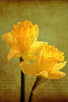 Pdx Art Digital Art - Sun On Daffodils by Cathie Tyler