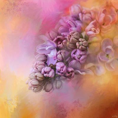 Photograph - Sun On The Lilacs by Jai Johnson