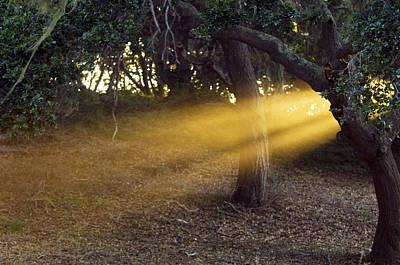 Photograph - Sun Rays 2 by Jill Reger