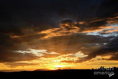 Photograph - Sun Rays by Alana Ranney