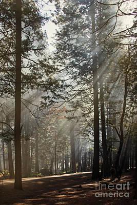 Photograph - Sun Rays by Cheryl Del Toro