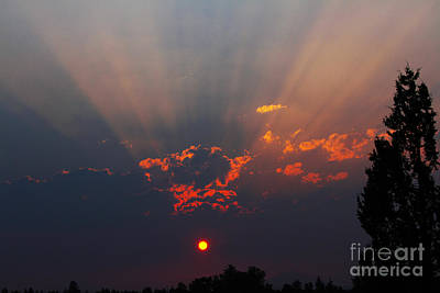 Photograph - Sun Rays by Gary Wing